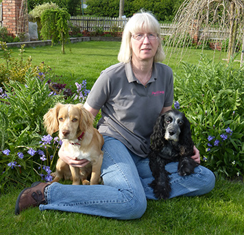 Dog Home Boarding Services in Leicester