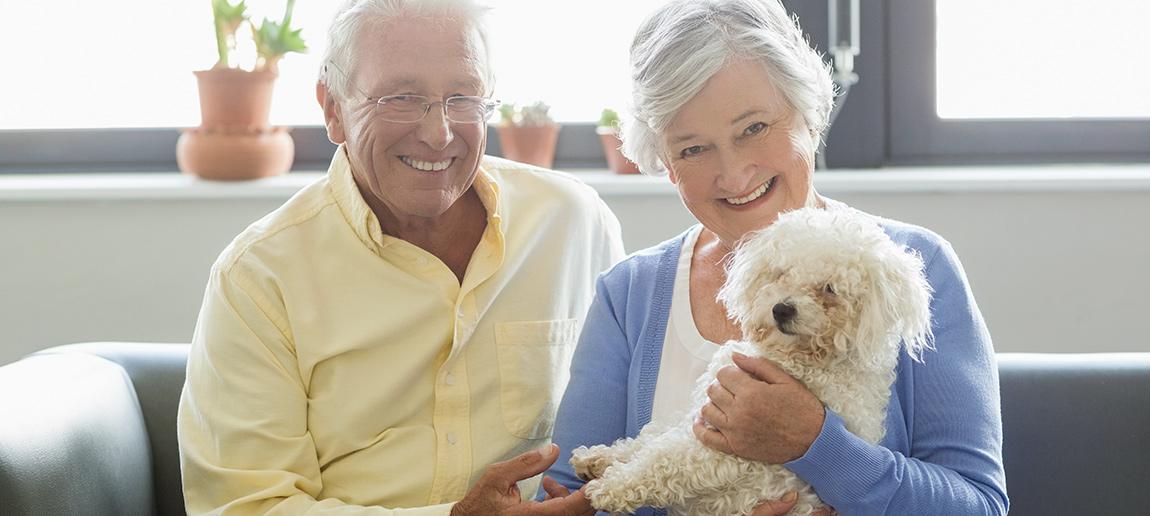 Become a PetStay carer