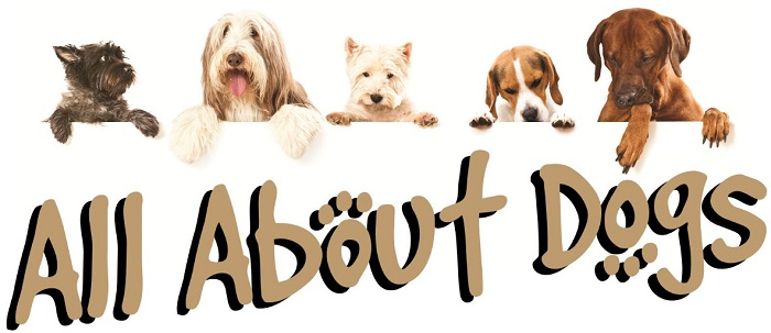 All about dogs - Norfolk