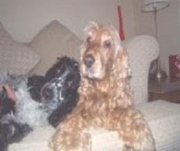 Cassie&Lucy