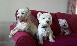 Leics-Sophie&Louie