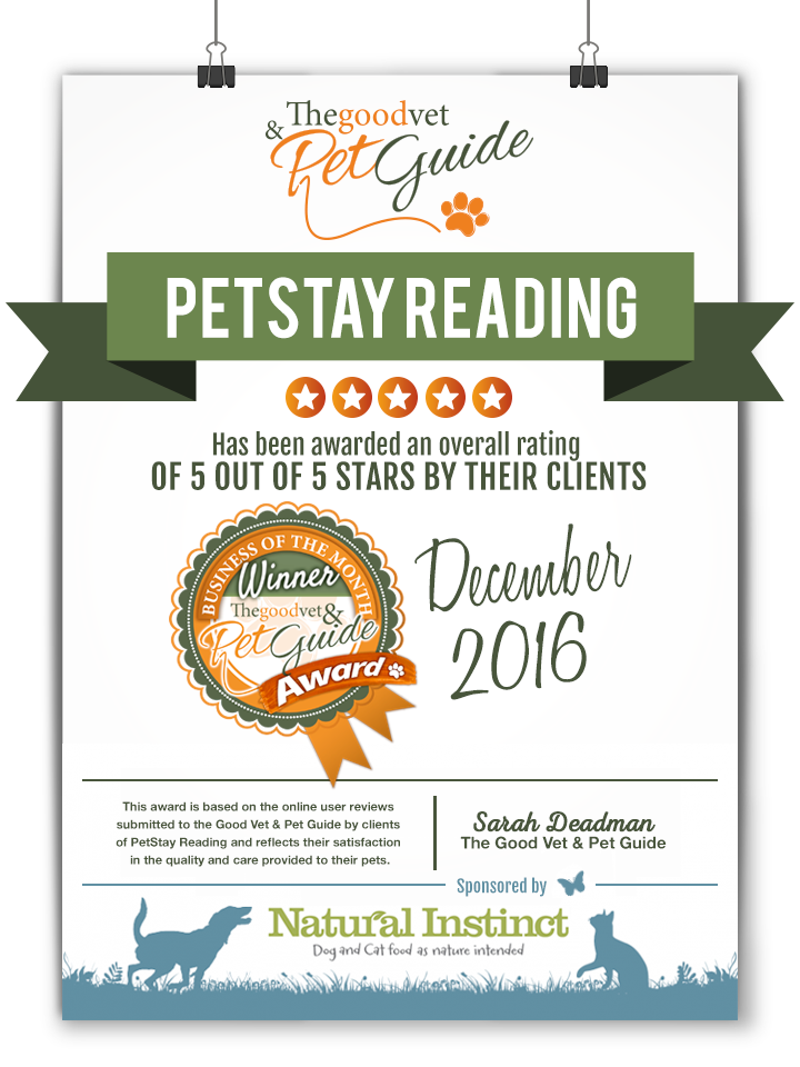 Reading- Pet Business
