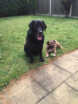 Stockport-Max&Pickles