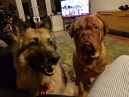 Nottingham-Gizmo&Cassie
