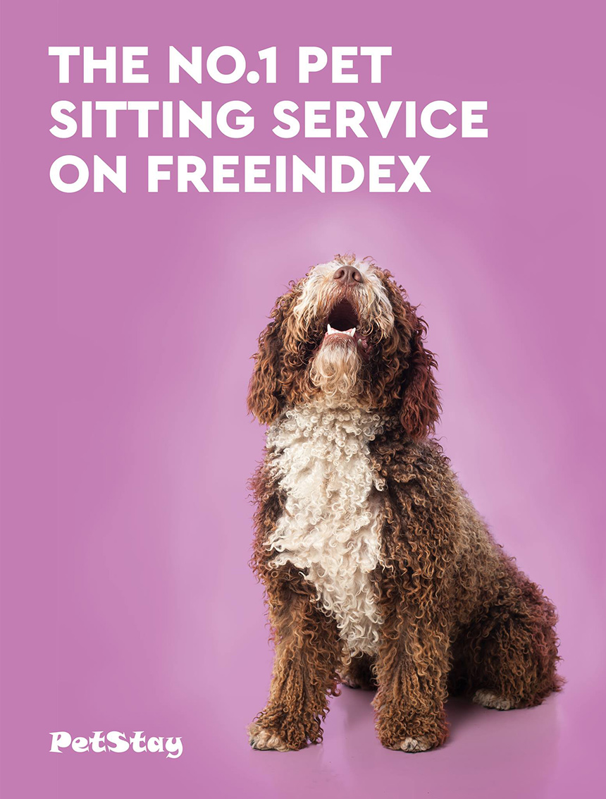 The No.1 Pet Sitting Service on Freeindex