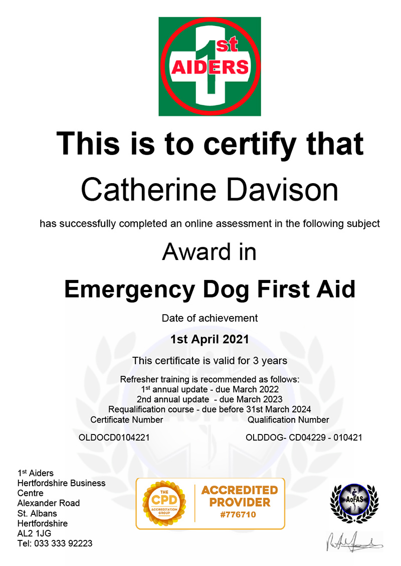 Emergency Dog First Aid