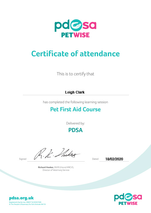 Dog First Aid Certificate