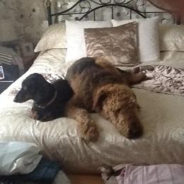 Peterbro-Beanie & Roo