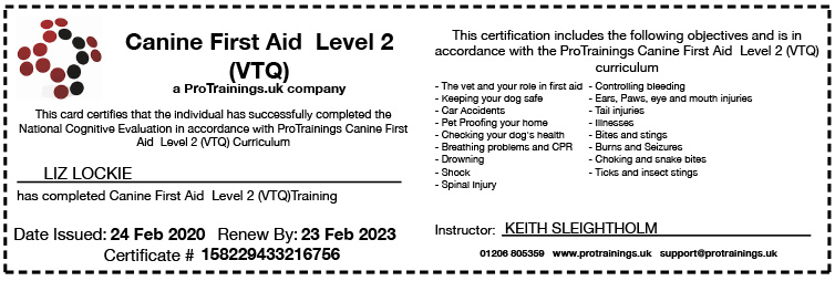 Guildford First Aid Certificate