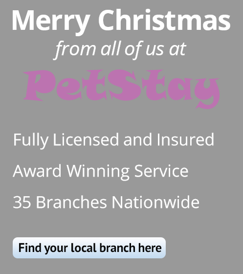 Merry Christmas from PetStay