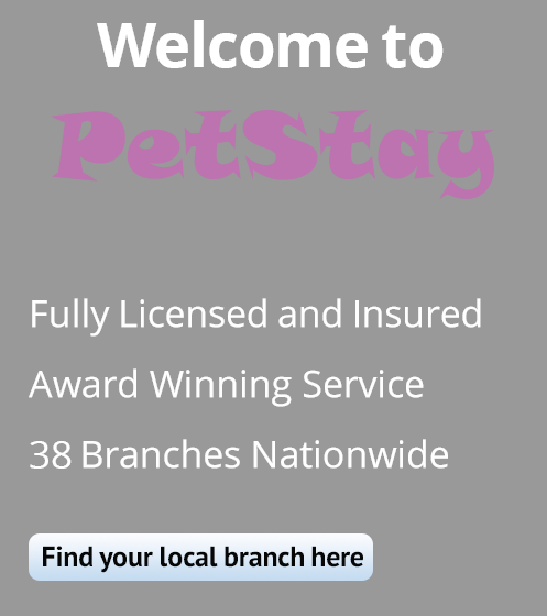 Welcome to PetStay