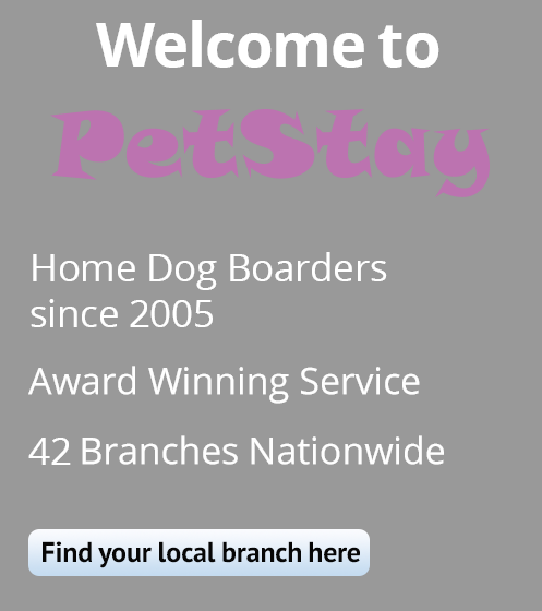 PetStay - 42 branches
